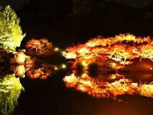 栗林公園 秋のライトアップ