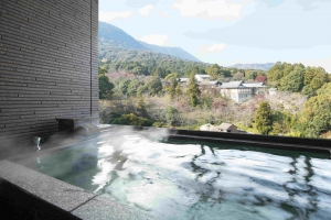 客室からこんぴらさんまたは讃岐富士を独り占めする別邸初音
