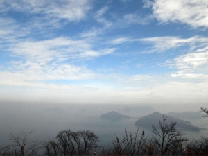 【紫雲出山】標高352mに咲く水仙が見頃でした