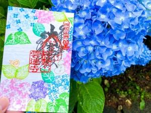 【雲辺寺】紫陽花が見頃に♪期間限定特製紫陽花御朱印も◎、山頂公園で絶景と「天空のブランコ」!!