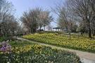 少し早い春便り♪「春らんまんフェスタ」