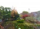 参道では、紅葉がもう少しで見頃です♪
