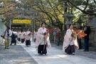 明日11月10日は金刀比羅宮で紅葉祭