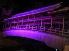 高燈篭・鞘橋のライトアップ!!