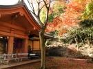 香川県の紅葉スポット 第82番札所【根香寺】