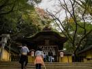 【金刀比羅宮】自然に映える石段の寺社 全国第2位